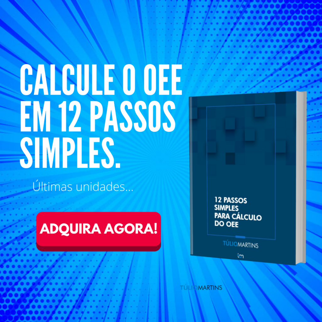 12 PASSOS OEE (10)